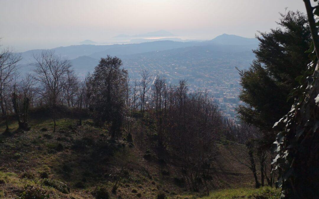 Villa Bifamiliare Camaldoli